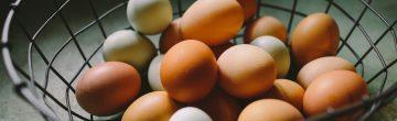 Vegan en eieren